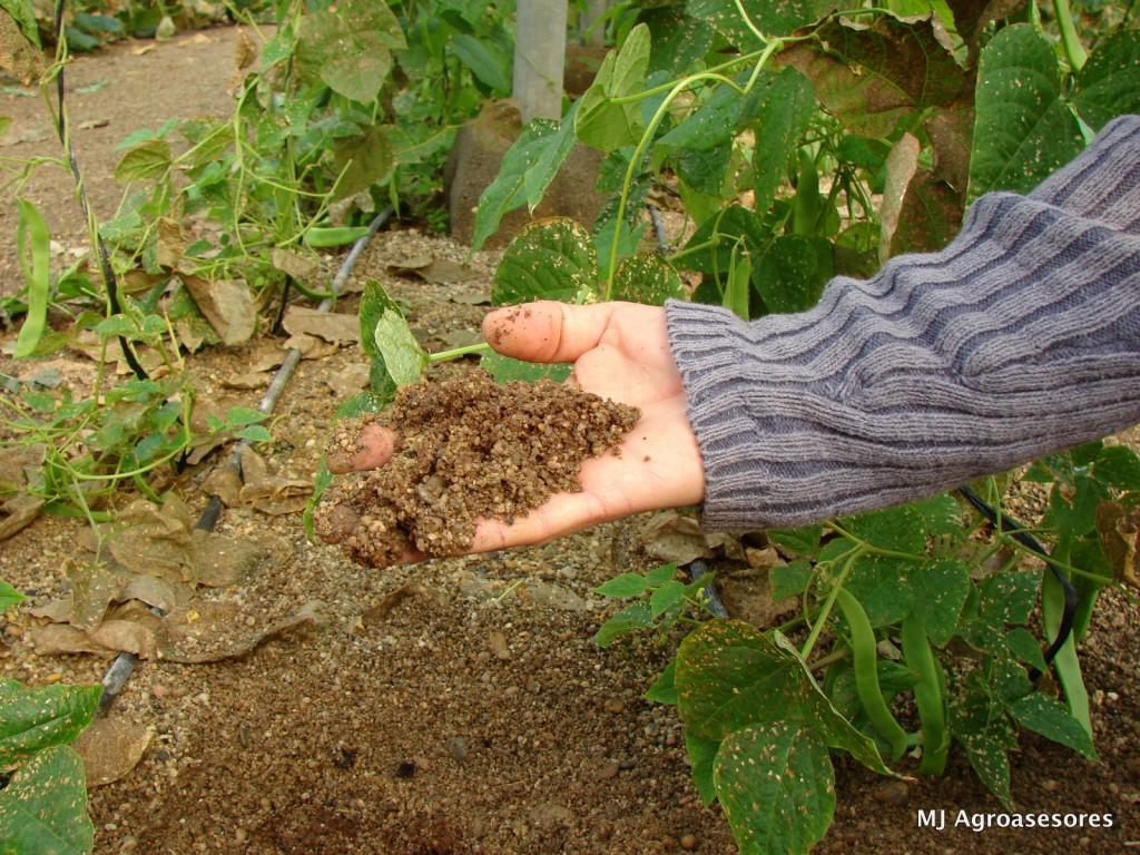 agriculturaecologica2_3