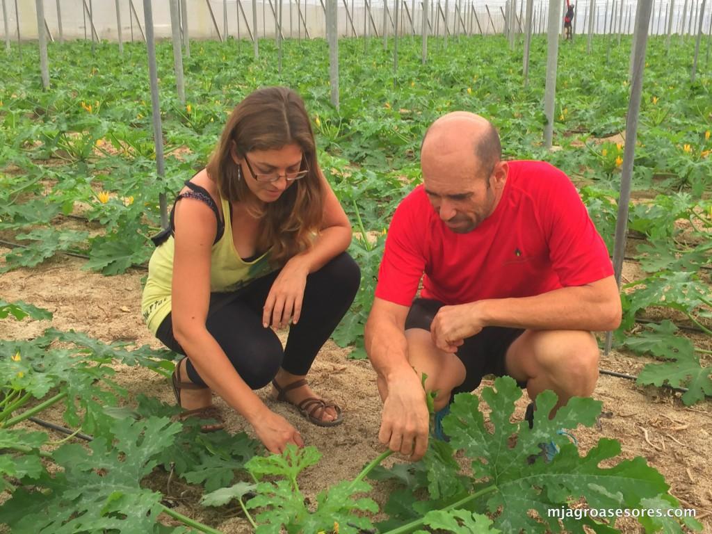 José Manuel, junto a nuestra técnico, Isa, comprobando el estado de la plantación