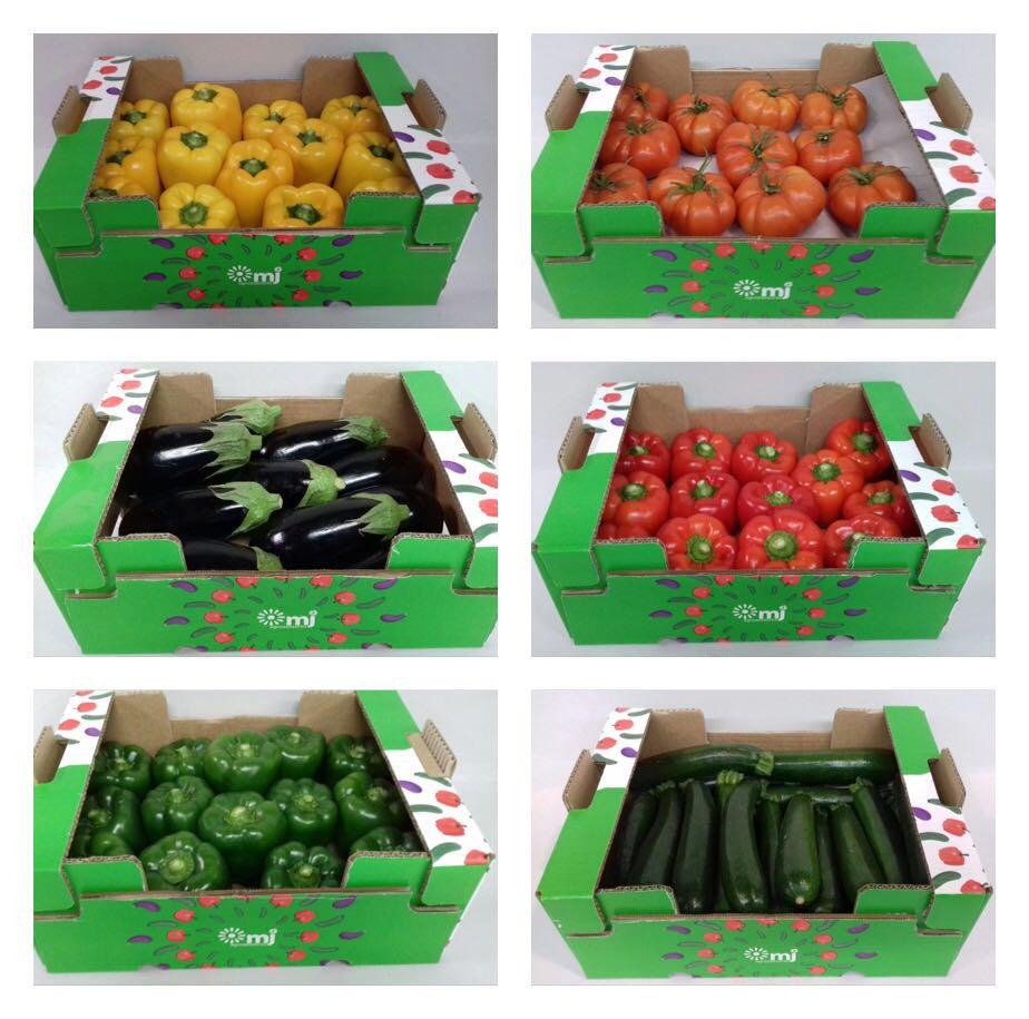 packaging MJ Agroasesores